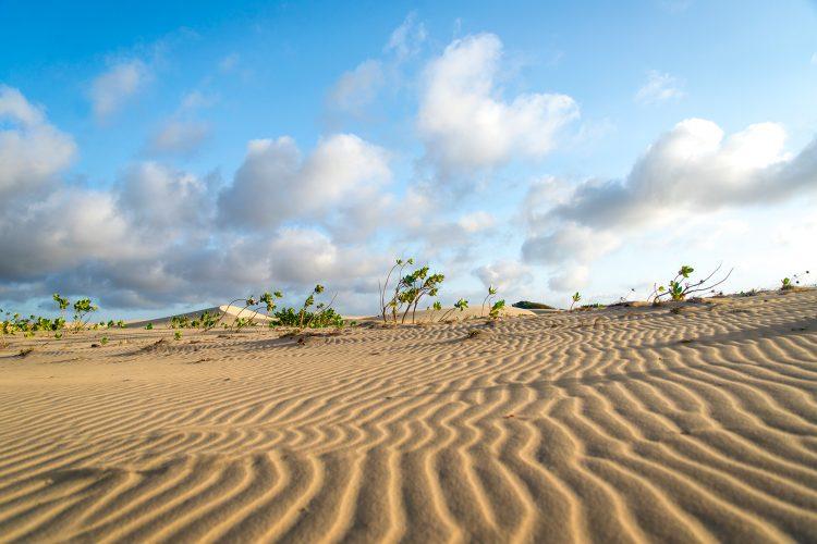Brazil 2015, Landscapes, Dirk Heurich