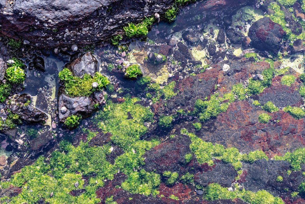 Cabo Verde, Landscapes, Nature, People 2018, Dirk Heurich